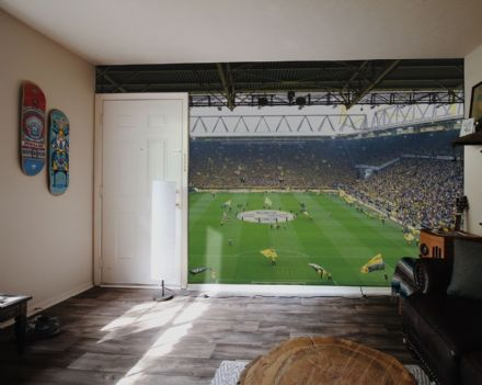 BVB 01 Football Stadium wall mural wallpaper